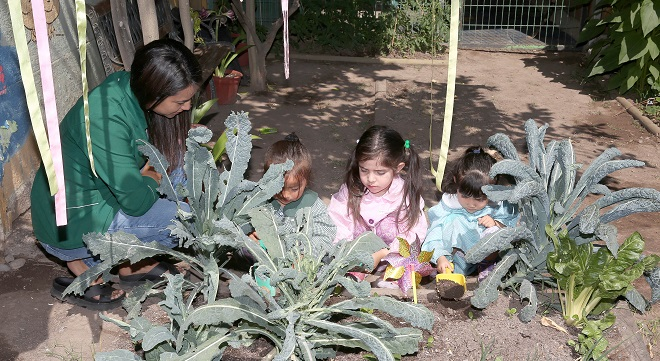 """Siembra Cambio:""""Los niños deben recibir educación medio ambiental"""""""